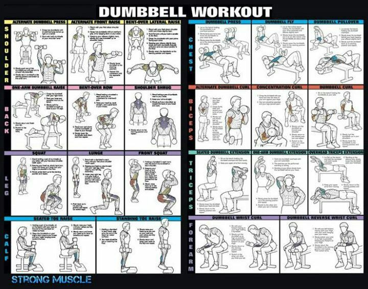 Workout Plan At Home To Lose Weight Images Boot Camp