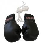 Mini Boxing Gloves $3.75
