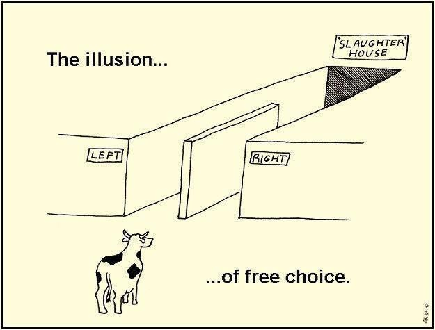 The Illusion of free choicePolitics, Free Choice, Parties System, Funny Pictures, Funnypictures, Truths, Funny Stuff, Humor, Illusions