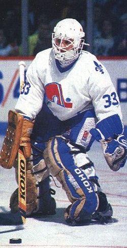 Quebec Nordiques Goalie | Québec Nordiques goaltending history : Mario Gosselin