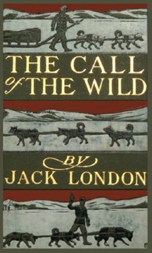 The Call of the Wild is a book that will really capture the imagination. It's fairly brutal, but I read it when I was young and I recommend it to any other youngling or person seeking a mental adventure. Survivalist literature is always thrilling, but Jack London's history with the Alaskan gold rush makes this one particularly fascinating, especially as told from the perspective of man's best friend.