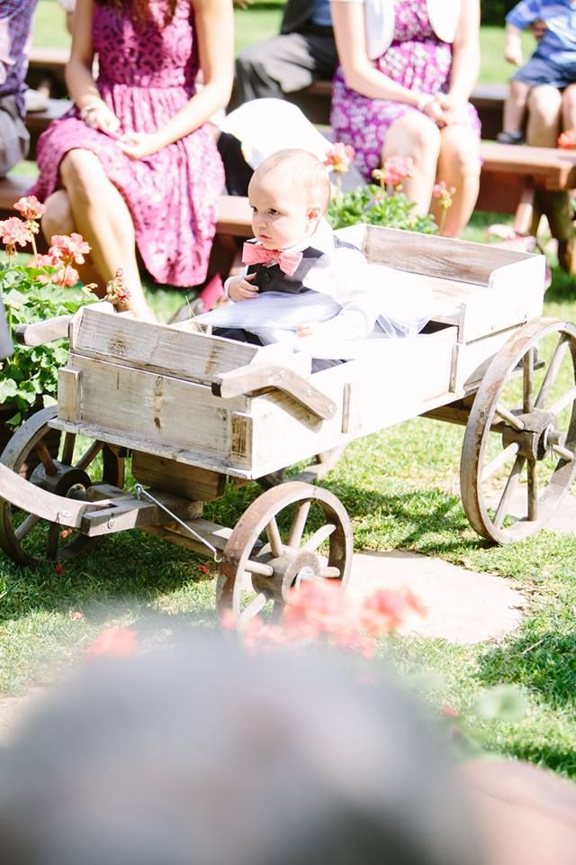 Sunkissed Tangles: Baby ring bearer
