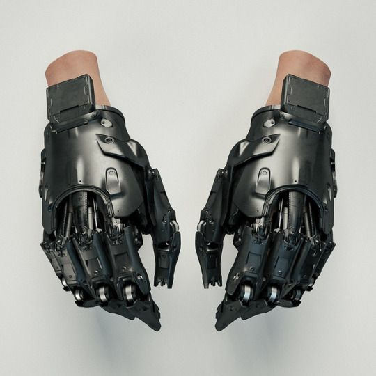 Rhubarbes prosthetic hand replacement