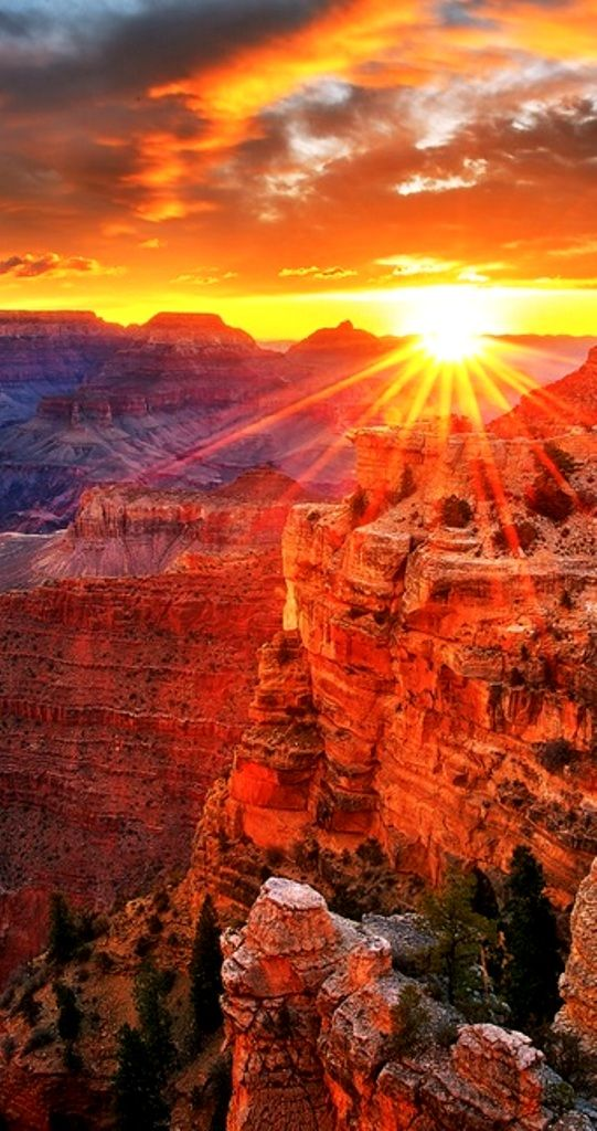 Trending Grand Canyon Sunrise Ideas On Pinterest Grand - Rare weather event fills grand canyon with fog and gives us this breathtaking sight