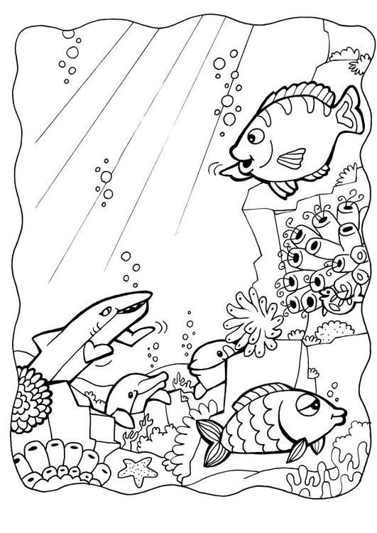 79 best Coloring for Kids images on Pinterest | Adult coloring ...