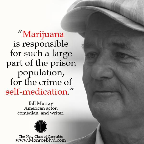 """Marijuana is responsible for such a large part of the prison population, for the crime of self-medication."" ~ Bill Murray"
