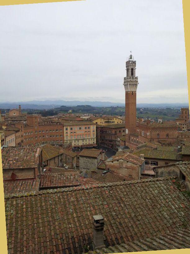 Siena, piazza del Campo vista dall'alto