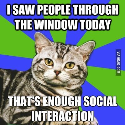 LOL. That's enough social interaction for today! Too funny. And sometimes for an introvert too true! @Charity Jackson