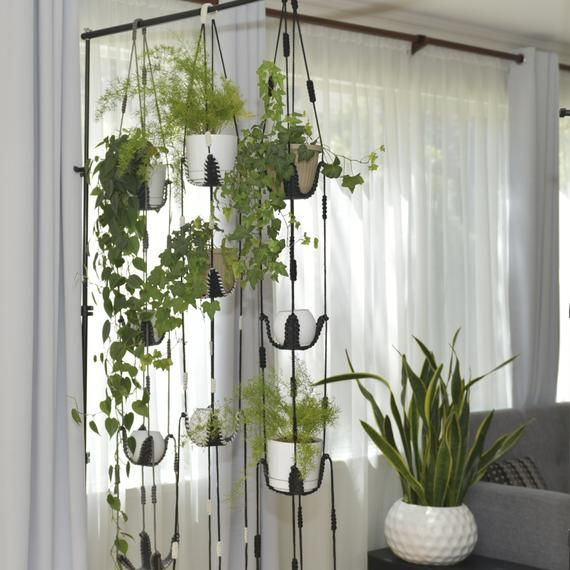 Adjustable Plant Hanger Multiple Plants Display Room Etsy Hanging Plants Indoor Room With Plants Hanging Plants