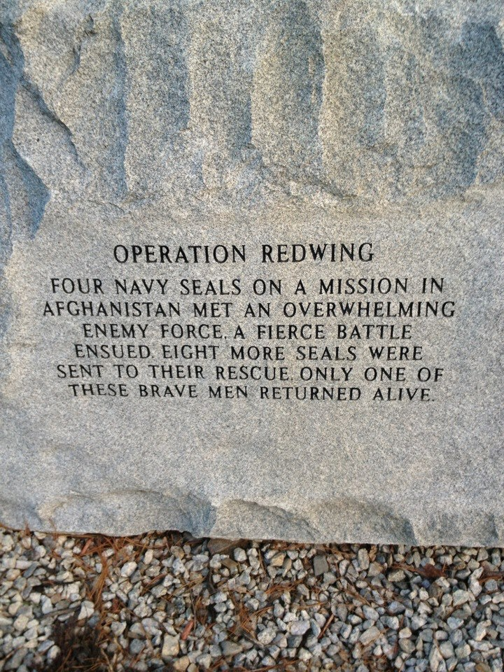 Operation Redwing  I saw the movie. These men were the bravest of the brave. May the forever rest in peace.