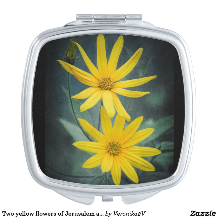 Two yellow flowers of Jerusalem artichoke compact mirror, personalized, customized, artwork, photo, photography, decor, gift, sale, buy, zazzle, shop, yellow, nature, garden, flower, petal, plant, sunflower, earth apple, jerusalem artichoke, summer, beautiful, topinambur, bloom, sunchoke, sunroot, pollen, flowerbed, topinambour, blossom, florescence, bright, flora, floral, green, leaf, macro, aroma, inflorescence, herbal, countryside, dark