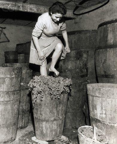 Woman Stomping Grapes - Frascati 1957   #TuscanyAgriturismoGiratola
