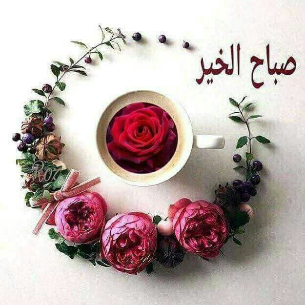 Pin By White Snow On 00 To Be Posted Good Morning Arabic Good Morning Images Morning Greeting