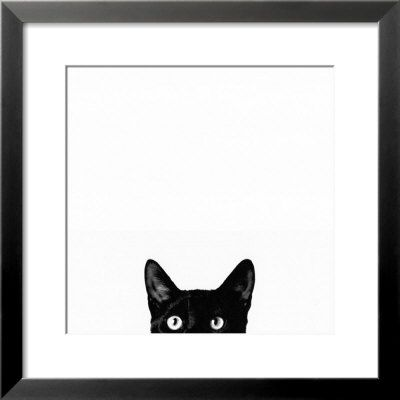 Cat art... I love this funny and quirky print. Great for guest bathroom or maybe my eclectic photo wall.