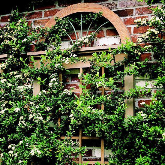 45 Best Old Window Frames Images On Pinterest Old