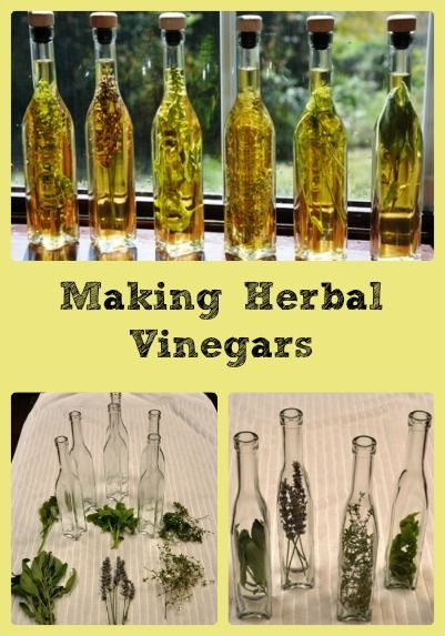 It's nice to have herbal vinegars on hand to boost the flavor of our favorite dishes, and since our growing season is just getting started, it's a good time to make some. It's simple to make and can add a wonderful shot of summertime flavor to salad dressings, marinades, gravies, and sauces. I also like …