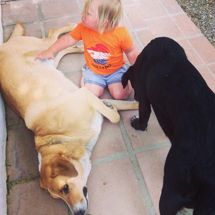 Zoooo lief...helemaal gek van onze honden! #felien #doerak #aza