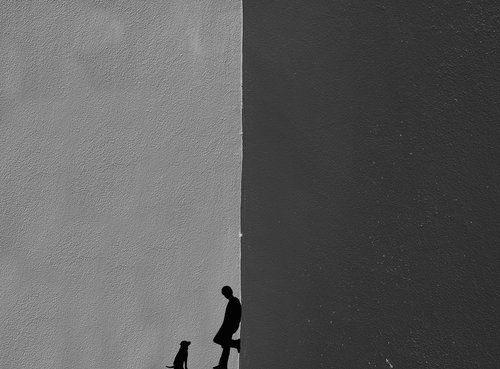 by Roxana Labagnara