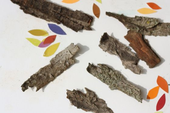 bark and paint swatch trees - happy hooligans - fall tree art for kids