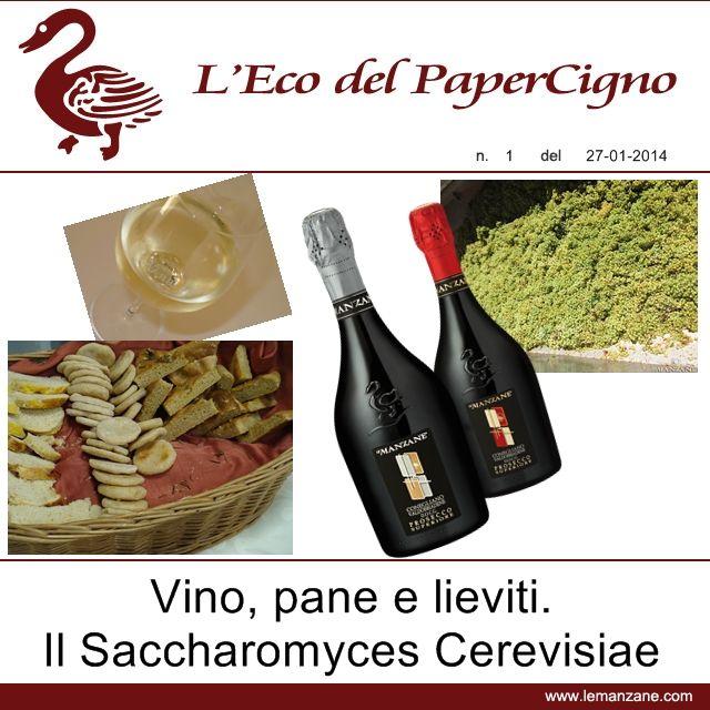 Papercigno by Le Manzane - Vino, pane e lieviti. Il Saccharomyces Cerevisiae