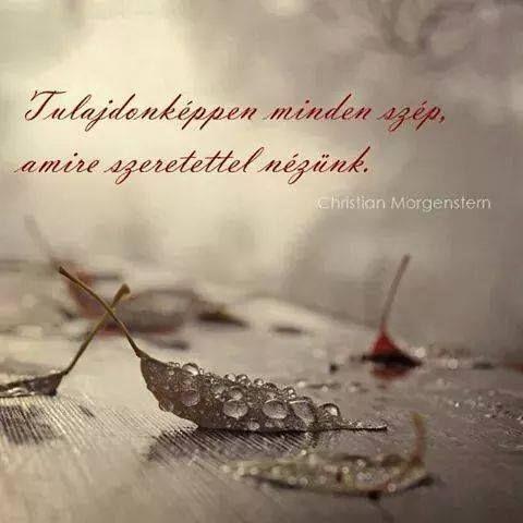 Christian Morgenstern gondolata a szépségről. A kép forrása: Életvonal #…