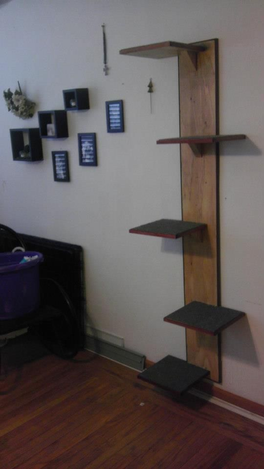 Wall mounted cat tree stands 6' tall w/ 5 perches and is birch with mahogany trim. This sleek addition takes up minimal space but will give your cat years of recreation.