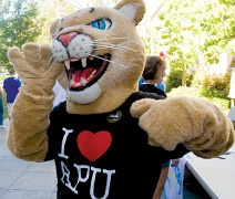 SO EXCITED TO BE A COUGAR! ❤ Rawr!!!!  Azusa Pacific University in the Fall :)