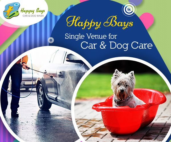 57 best car detailing calgary images on pinterest calgary car cleaning be it your car or dog is a meticulous task that calls for solutioingenieria Images