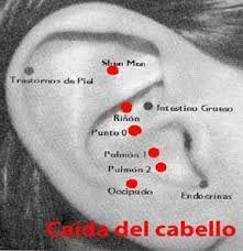 Resultado de imagen para punto cero oreja
