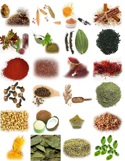 SAĞLIK DOSYASI : Çeşitli hastalıklara iyi gelen bitkiler