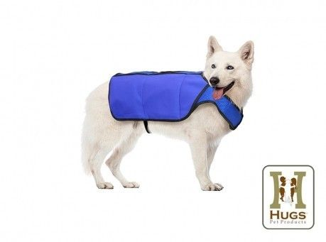 Image of Breathable Chilly Vest for Dogs (Medium ONLY)