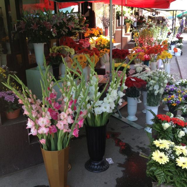 Latviassa ihmiset vievät toisilleen usein kukkia. Joka paikassa näkee ihmisiä kulkevan kukkakimppujen kanssa.
