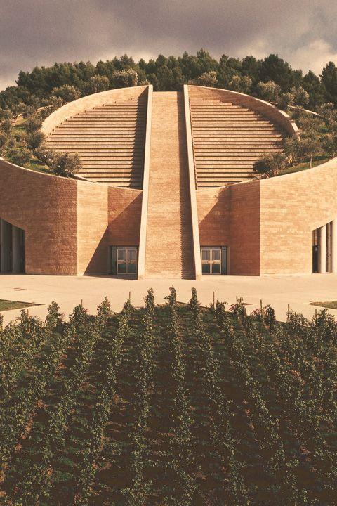 Petra, i grandi vini rossi di Toscana