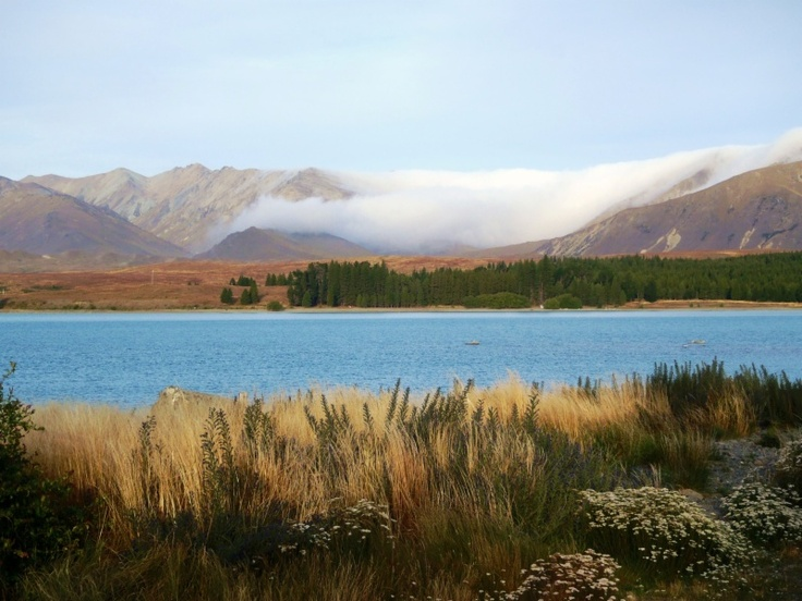 Lake Tekapo, Canterbury Region, New Zealand by Jen Corliss, M.D.