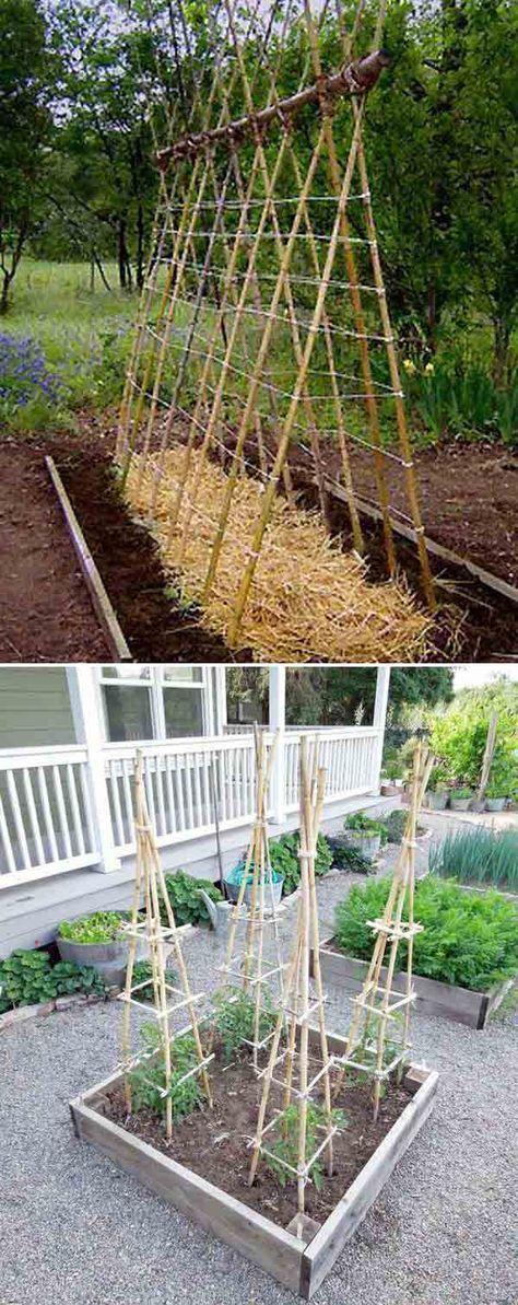 14 manières d'utiliser les bambous dans votre jar…