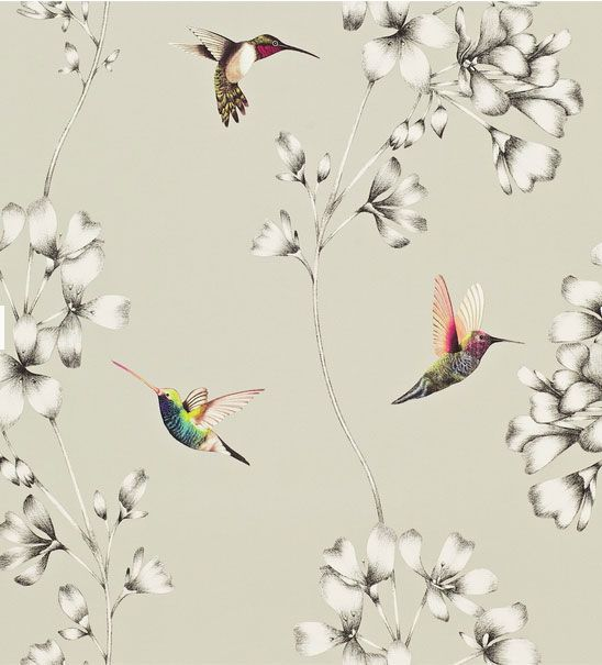 Harlequin amazilia wallpaper.... my Mom would adore this paper!
