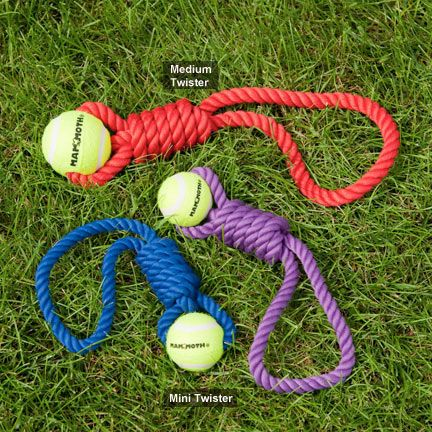 These are cheap enough. I'm thinking kong ball, metal cane, zip tie for a home made cat toy fashion dog toy.  Mammoth Twister Pull Tug with Tennis Ball