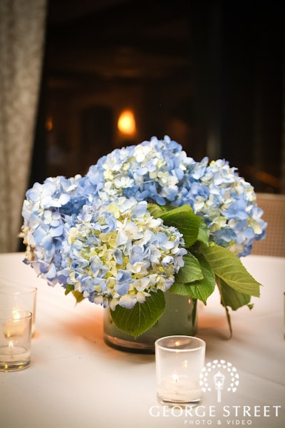 Centerpieces blue cream hydrangea in low leaf lined