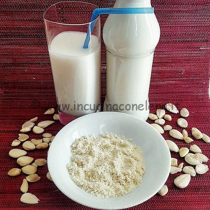 RACCOLTA Ricette Latte Vegetale