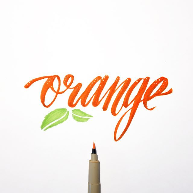 29/366 Orange #366project