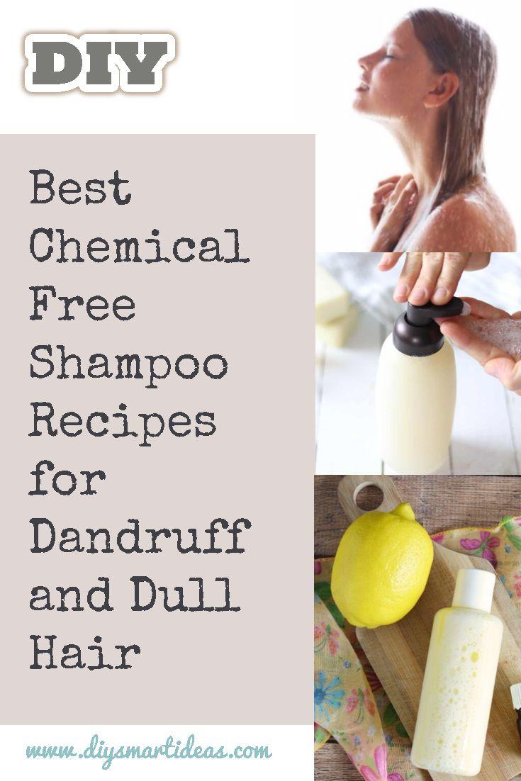 Best Chemical Free Shampoo Recipes For Dandruff And Dull Hair In 2020 Chemical Free Shampoos How To Make Shampoo Diy Shampoo