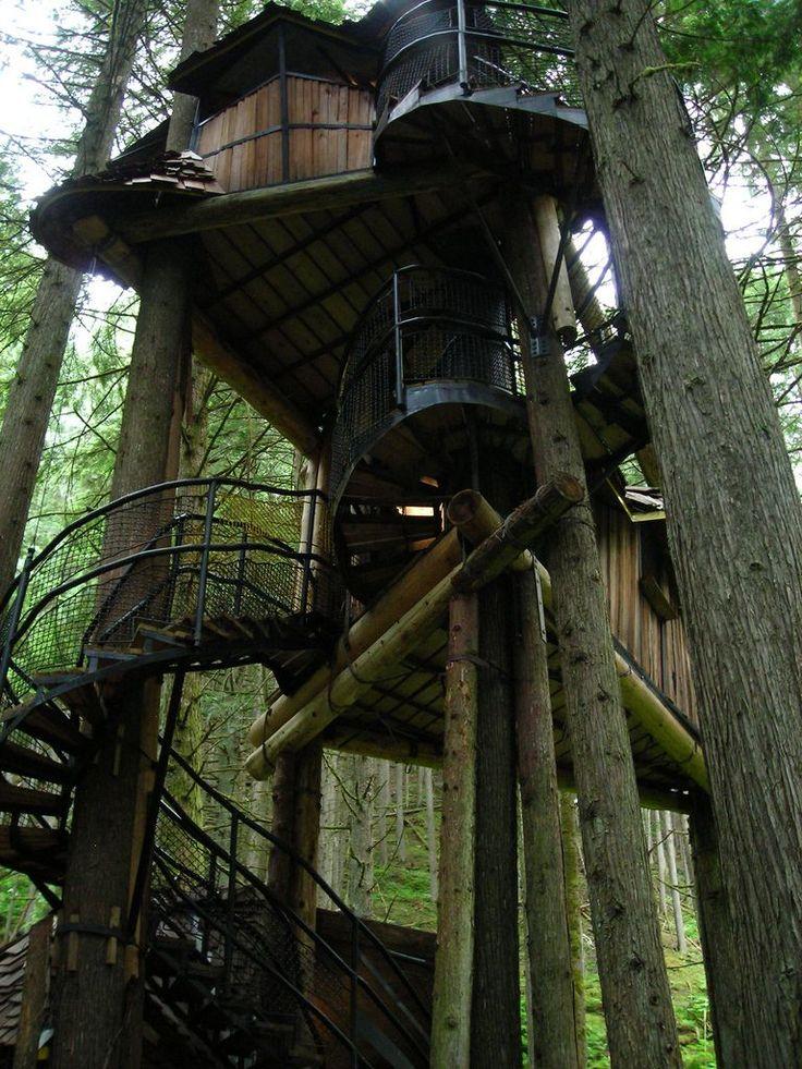NewPix.ru - Необычные дома на деревьях