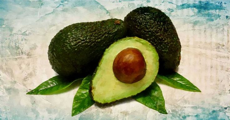 Benefits Of Avocado Leaves And How To Include It In The Diet