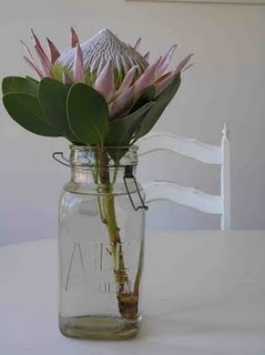 white linens & candles, clear glass jars really make proteas pop!