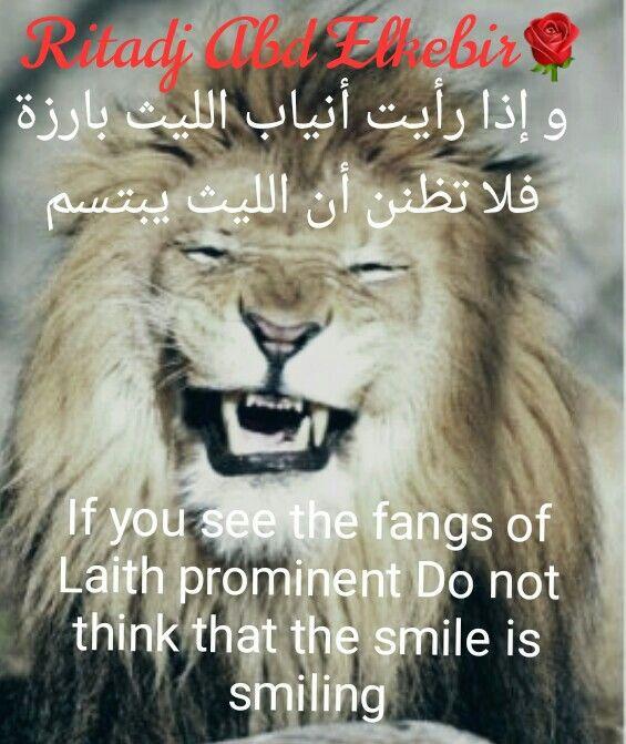 قال الشافعي رحمه الله وإذا رأيت أنياب الليث بارزة فلا تظنن أن الليث يبتسم Poster Movie Posters Animals