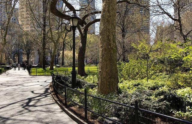¿Qué sabes de la gentrificación verde? La construcción de parques y zonas verdes en las ciudades tiende a atraer a las clases sociales más altas y excluye a los colectivos más...