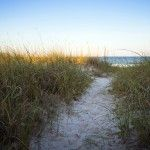 15 Things To Do on Amelia Island in 2015
