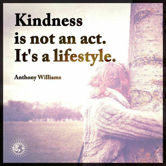 17 Best Images About Kindness Quotes On Pinterest
