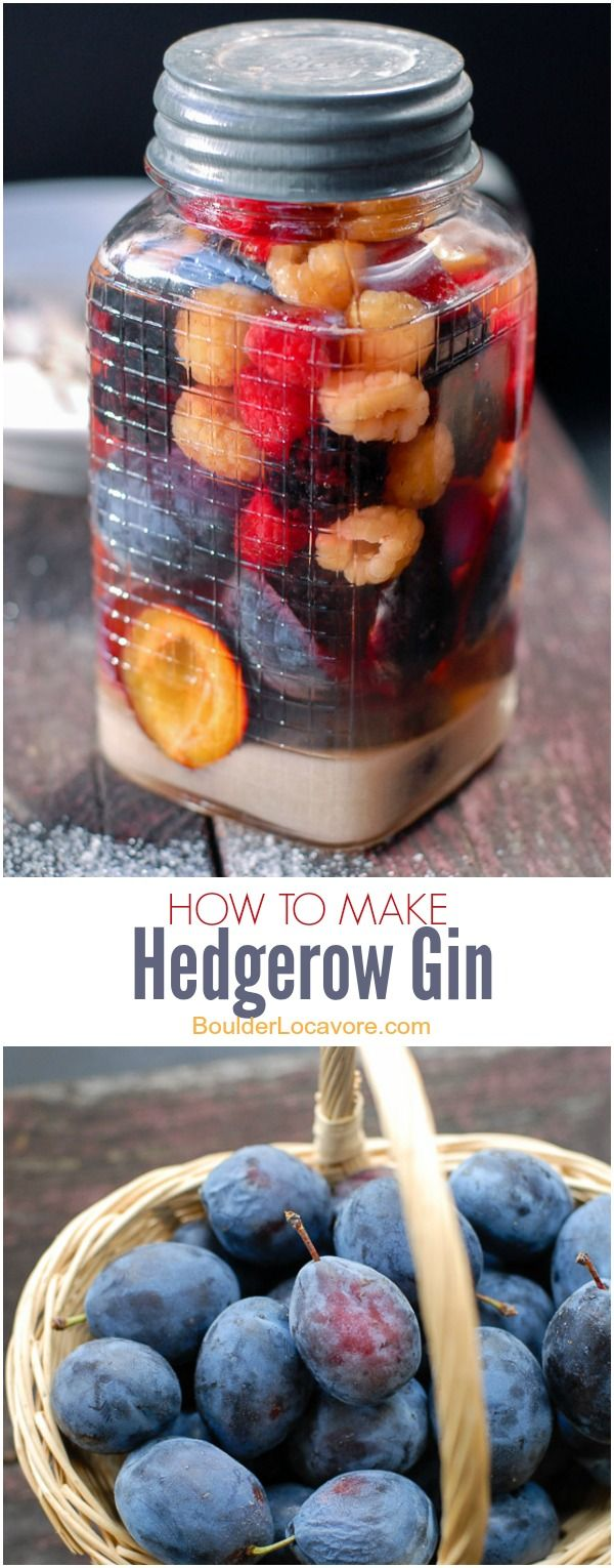 How to Make Hedgerow Gin. A simple liqueur made with gin, sugar and hedge-grown…