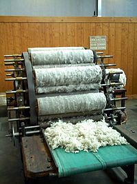 WOOL. Textile manufacturing - Wikipedia, the free encyclopedia